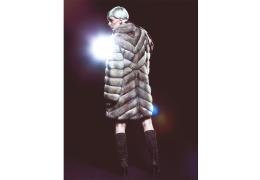 Salvio_Parisi_Furs_A#5