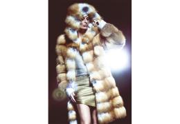 Salvio_Parisi_Furs_A#6